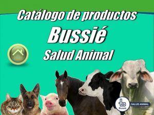 Catalogo de Productos Bussie