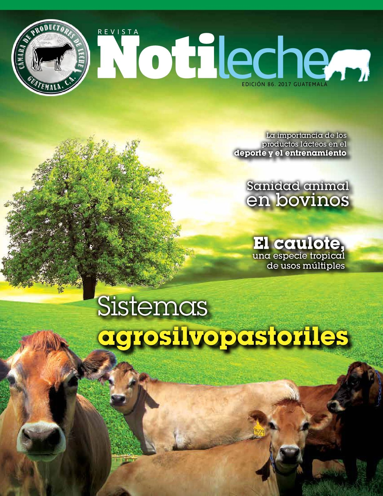 http://camaradeproductoresdeleche.org.gt/wp-content/uploads/2017/02/Revista-NOTILECHE-No-85-CPLG.pdf